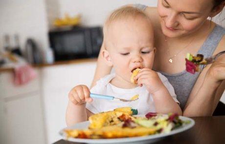 זמני ארוחות – הרגלים שחשוב שילדים יתרגלו אליהם