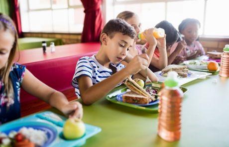 החשיבות של מזון בגני הילדים